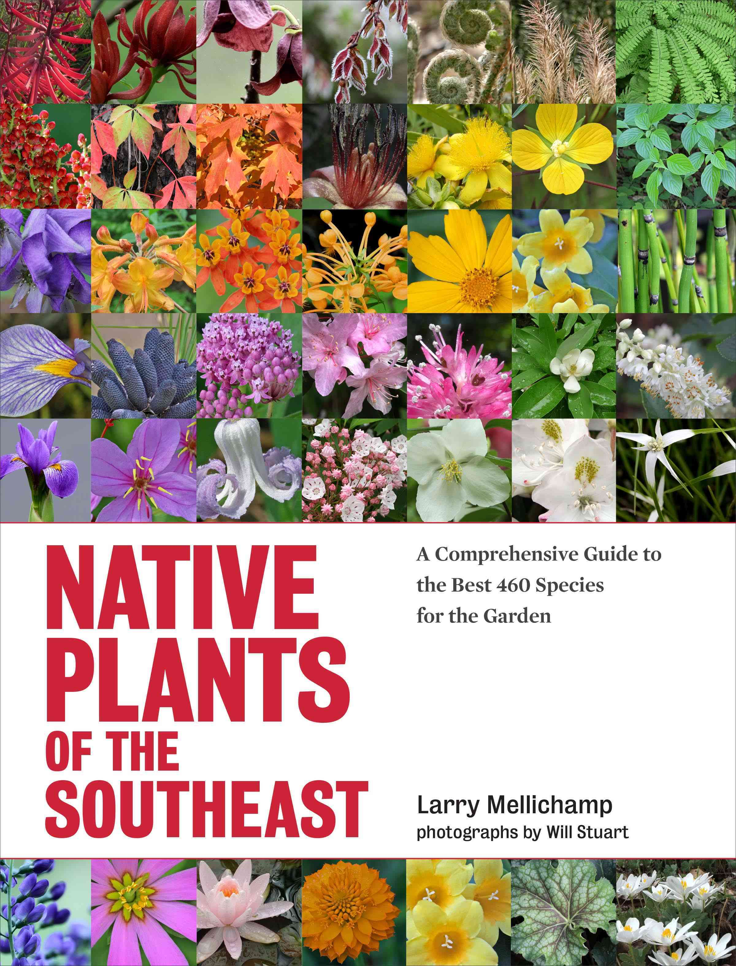 Native Plants of the Southeast By Mellichamp, Larry/ Stuart, Will (PHT)